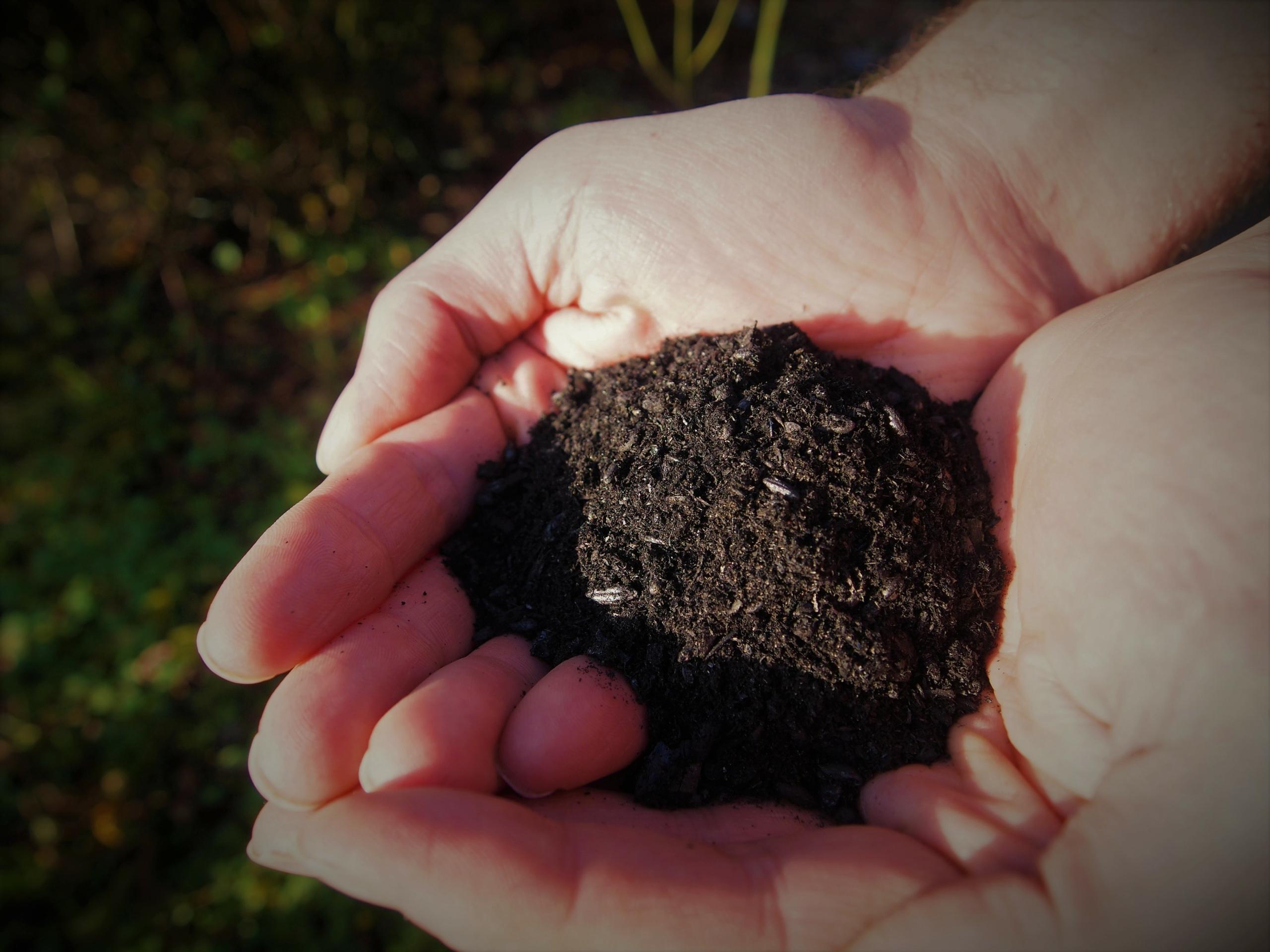 biokol användning trädgård Gotland